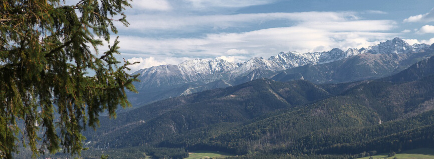 Krakow airport to Zakopane route  allows you to appreciate the beauty of the nature.