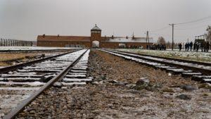 Auschwitz Birkenau - brama do obozu
