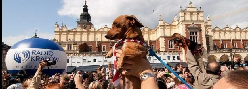 Cultural happenings in Krakow in September