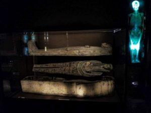 Krakow city breaks - Archaeological Museum