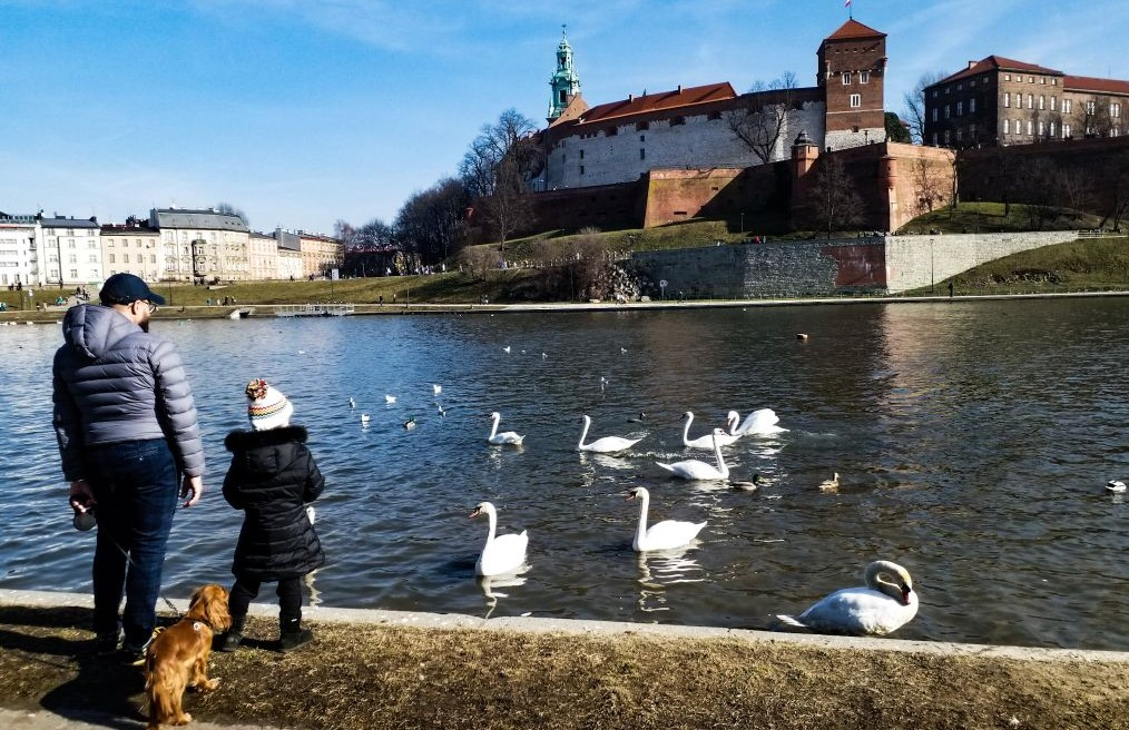 autumn - beautiful Krakow pictures