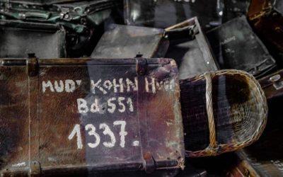 Auschwitz Tour Suitcases