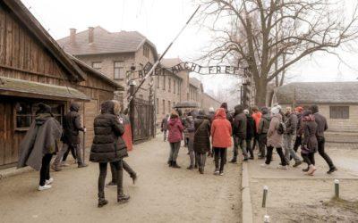 Auschwitz Tour - Arbeit Macht frei