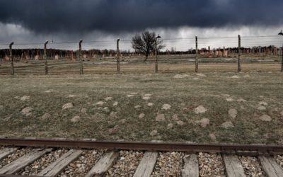 Weekend in Krakow - Auschwitz tour