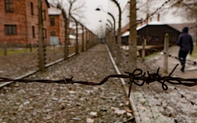 Visit Auschwitz concentration camp