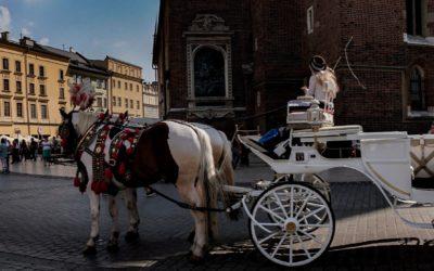 Krakow walking tours - horse cabs