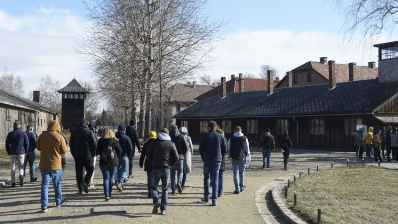 Auschwitz facts in numbers - visitors