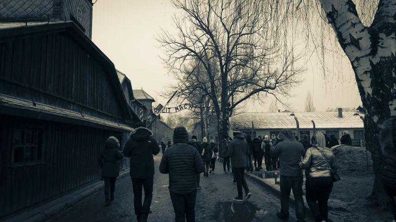 Auschwitz today - Attendance