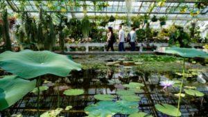 Botanical Garden - weekend in Krakow