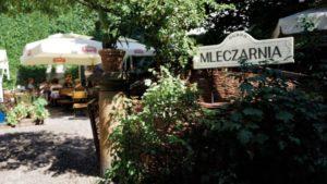 Cafes in Krakow Jewish Quarter