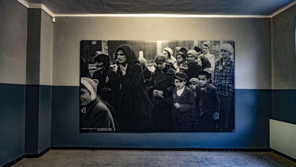 Auschwitz prisoners photos